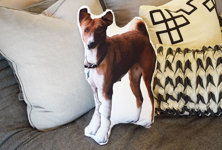 DIY Custom Photo Dog Pillow